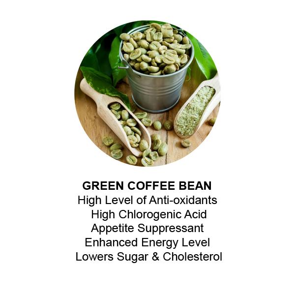 Lean N Green Coffee Lean N Green Online